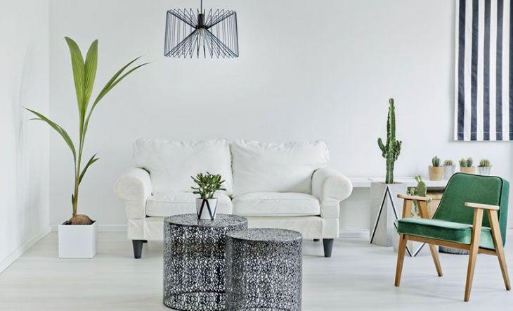 Naturaleza en tu hogar