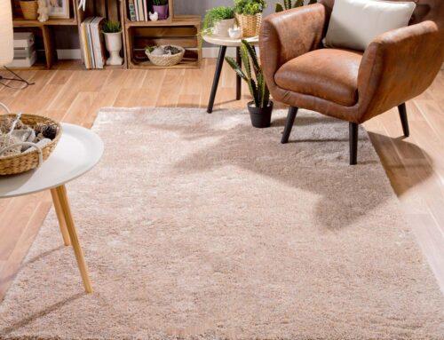 ¿Qué alfombra elijo?